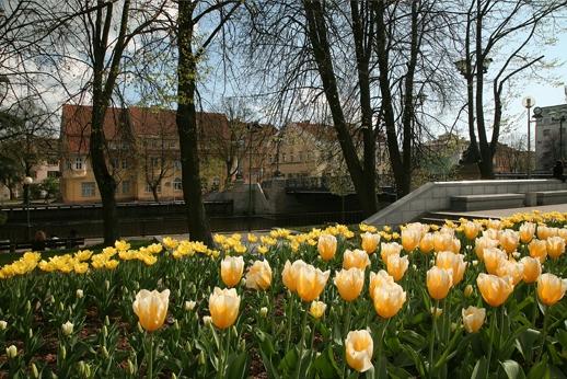 Pavasaris Klaipėdoje